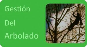 GESTIÓN ARBOLADO