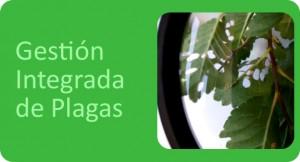 GESTIÓN INTEGRADA DE PLAGAS